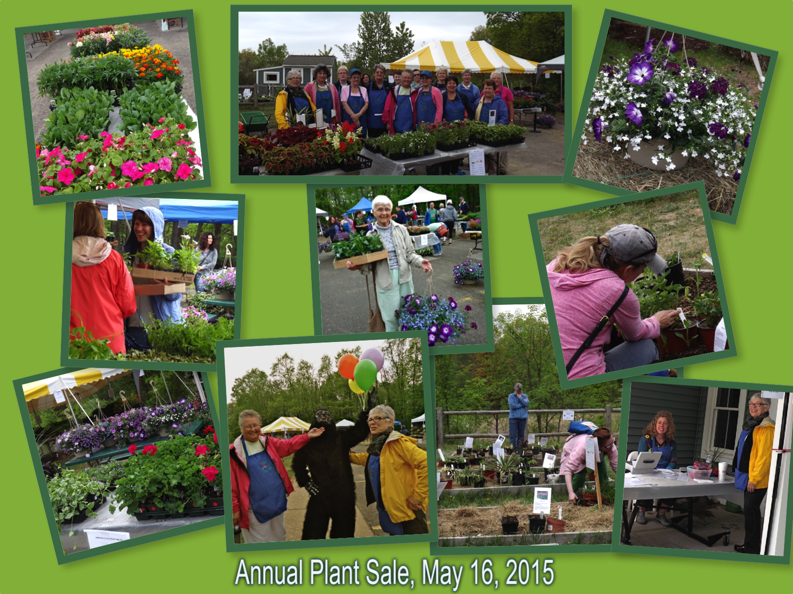 plant sale collage